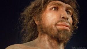 Museo MEH. Escultura de homo rhodesiensis de Elisabetth Daynès. © Mercedes Peláez.