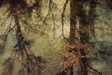 Los límites entre la pintura y la fotografía