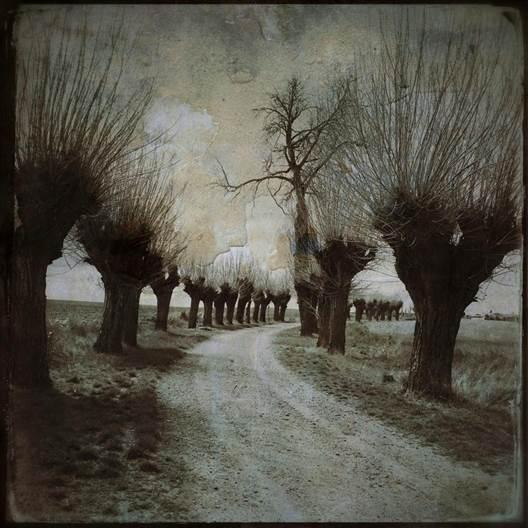 Camino de la ermita en dirección al pueblo, al fondo a la derecha, Boadilla de Rioseco, en la exposición Una mirada romántica al territorio.