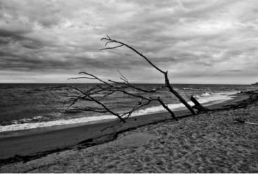 """El paisaje desnudo del """"Mar de invierno"""""""