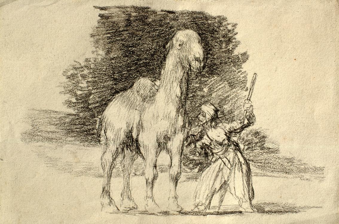 Dromedario con su guía, de Rosario Weiss y Francisco Goya, h. 1824, lápiz litográfico sobre papel.