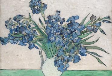 Entre las flores de Van Gogh