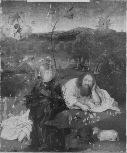 Fotografía infrarroja de Meditaciones de San Juan Bautista © Rik Klein Gotink, Museo Lázaro Galdiano.