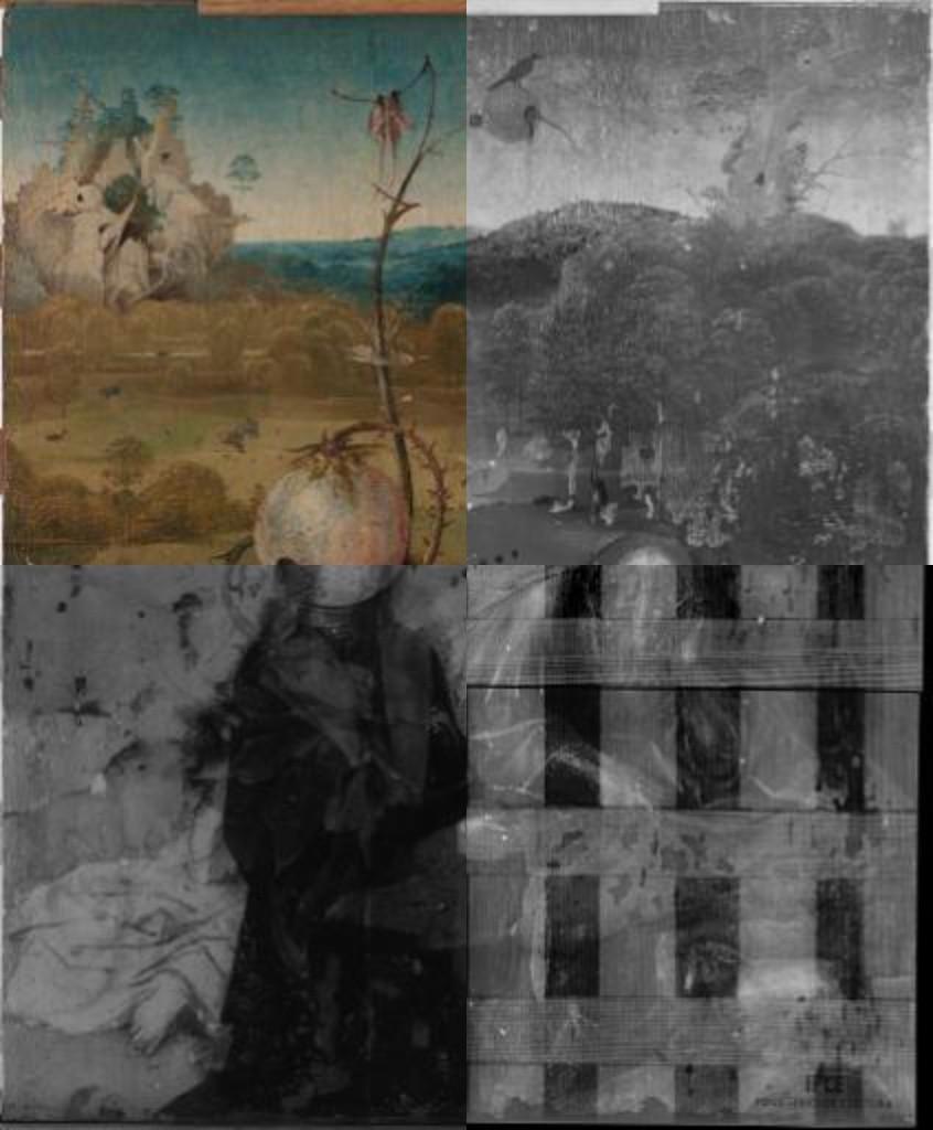 Vista cortina de las Meditaciones de San Juan Bautista. © Rik Klein Gotink, Museo Lázaro Galdiano.Arriba, detalle de las Meditaciones de San Juan Bautista (1485-1510), por Hieronymus Bosch. Inv. 8155 © Museo Lázaro Galdiano.