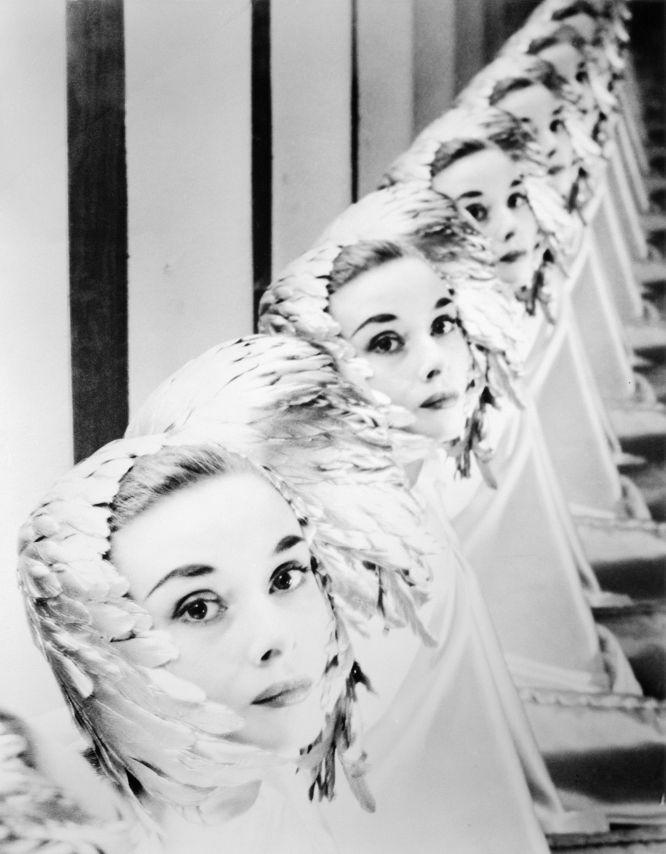 Audrey Hepburn fotografiada por Erwin Blumenfeld en 1952.