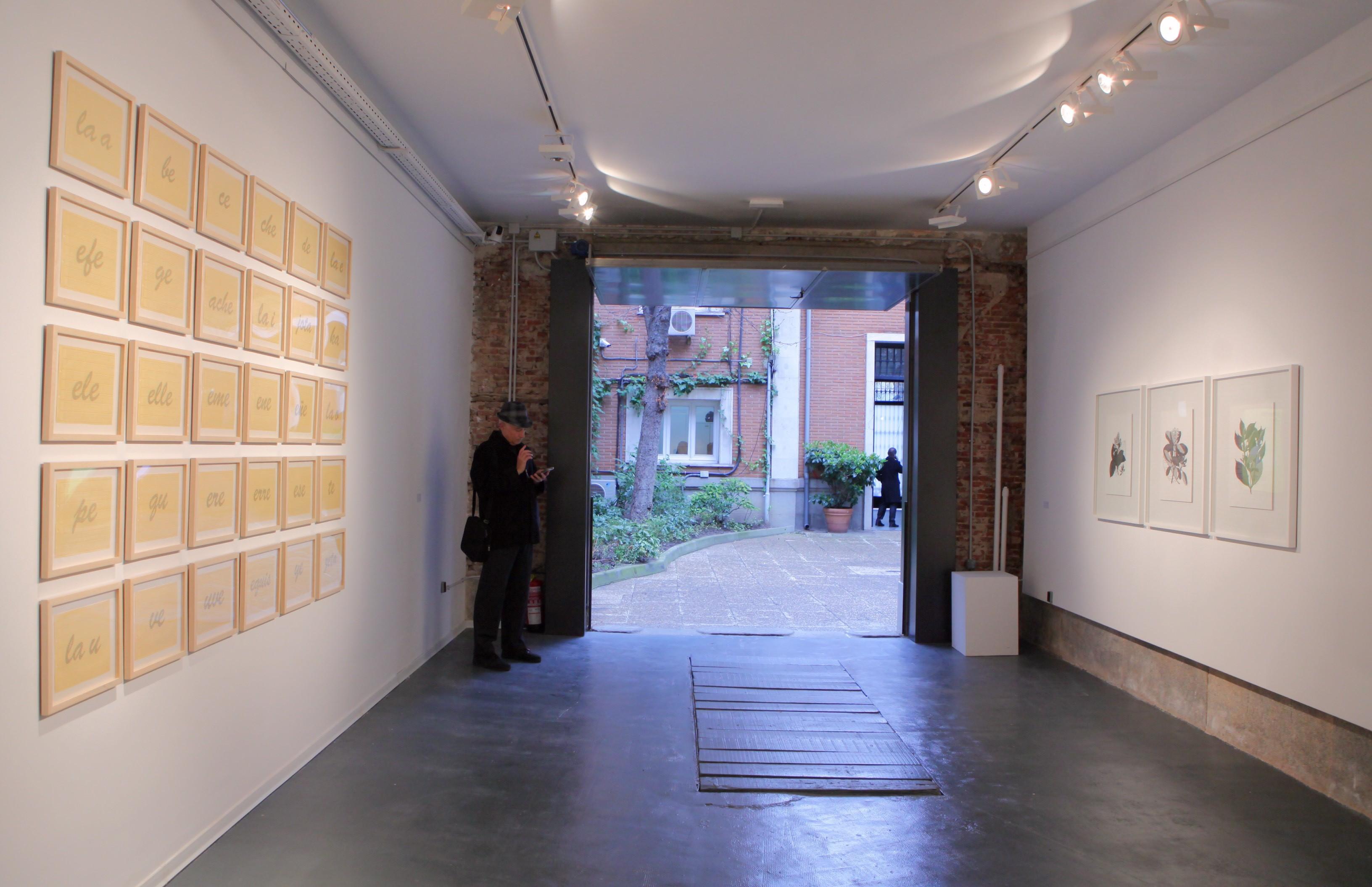 Vista de la exposición con las obras de Johanna Calle Nominal y Traducciones, de izquierda a derecha.