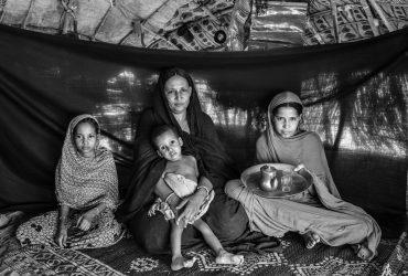 Brian Sokol: el drama de los refugiados