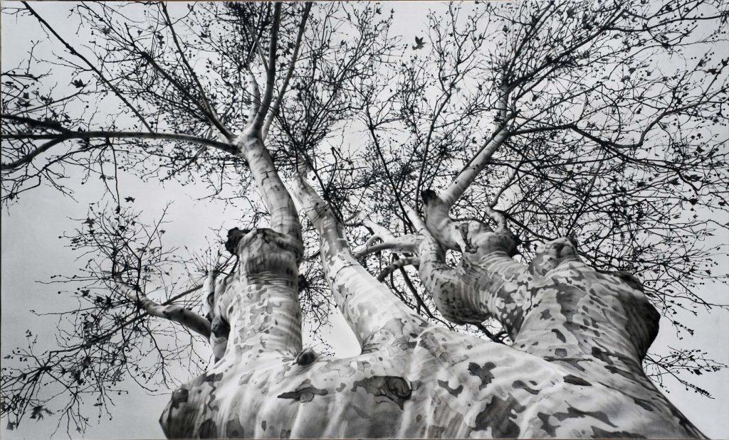 Sobre estas líneas, Canciones de invierno, de Hiara Albertoni. Arriba, una obra de Bautista Nieta. Todas las obras pertenecen a la Coleeción del MEAM, Barcelona.