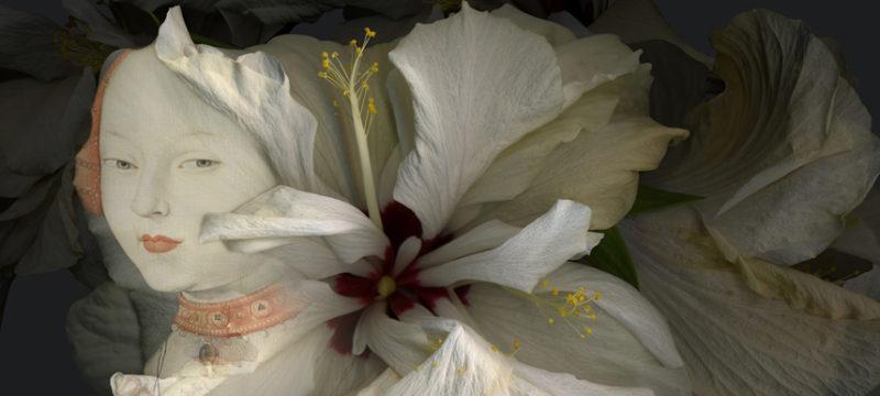 Hibiscus-detalle.jpg