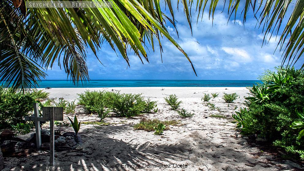 Playa de la costa oeste de Bird Island, Seychelles © Enrique Domínguez Uceta