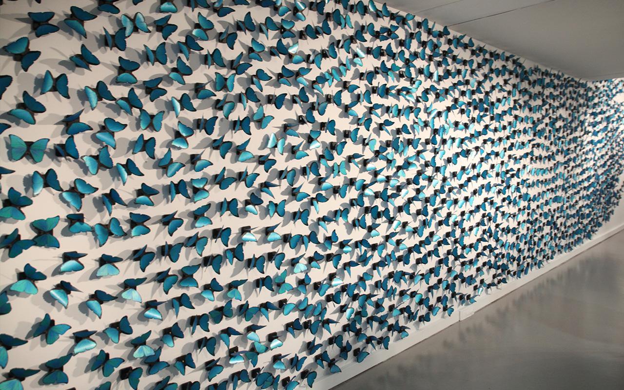El tiempo vuela, 1998 Instalación compuesta por inscripciones de textos en esmalte blanco y 1500 mariposas serigrafiadas sobre papel poliéster girando sobre mecanismo de relojería a ritmo de segundo. Medidas variables.