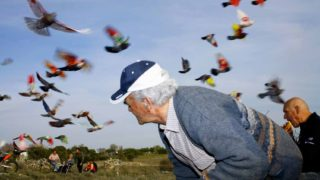 Ricardo Cases: artista de la crudeza