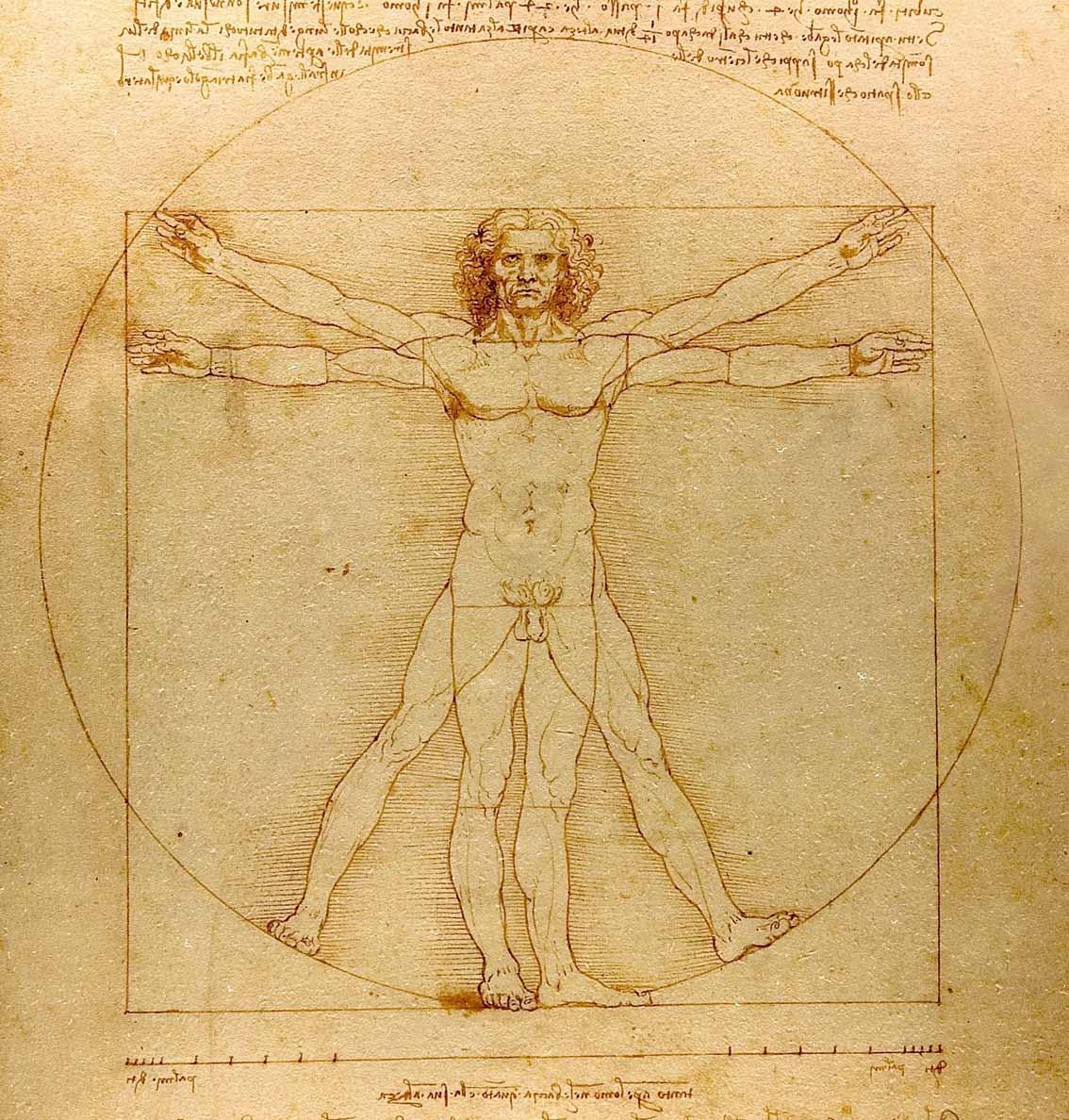 Leonardo da Vinci: el genio, el hombre Artes & contextos Da Vinci Vitruve Luc Viatour