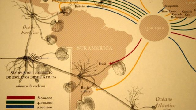 liliana-angulo-cortes.jpg