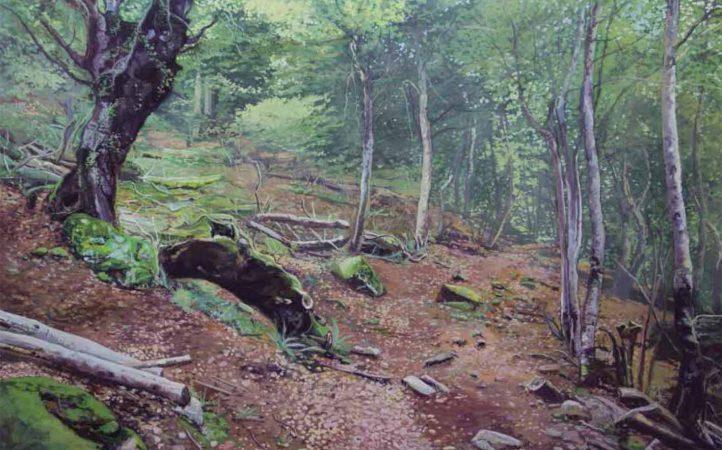 paisaje-1.jpg