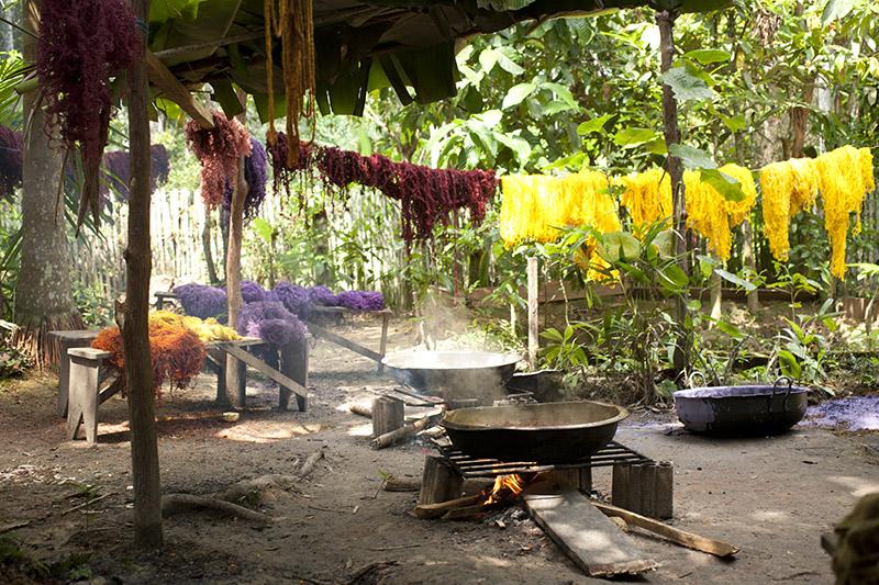 Color Amazonia, por Susana Mejía.