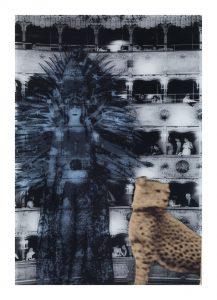 Reinas de la noche, por T.J. Wilcox, 2008..