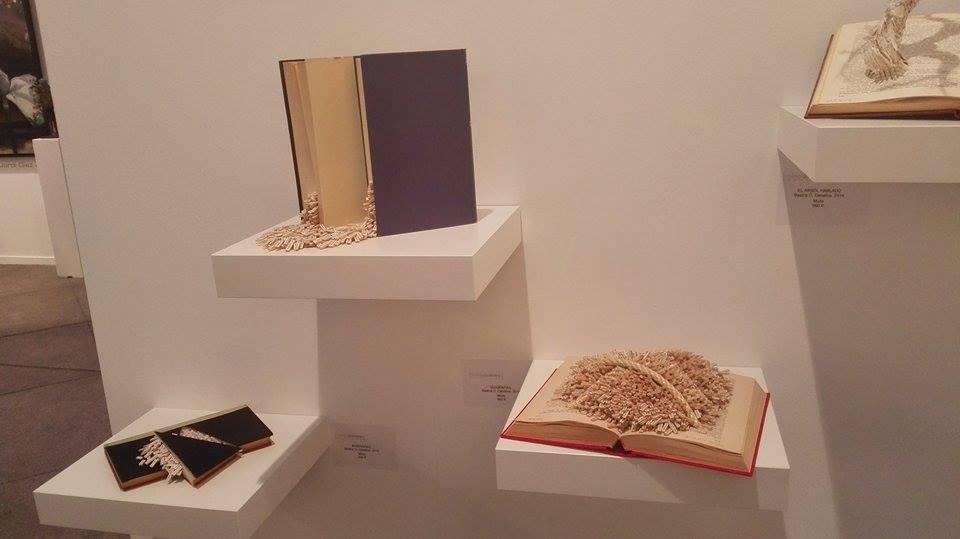 "Serie ""Bibliografías"", Beatriz Díaz Ceballos."