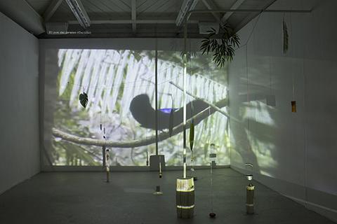 Movimiento armónico, por Leonor Serrano Rivas.