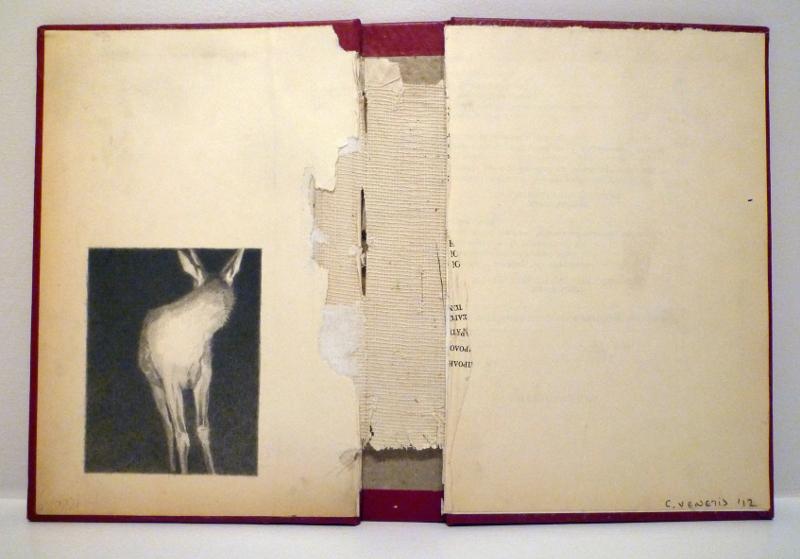 Anemic Archives Series, por Christos Venetis, 2013-2016, lápiz sobre portadas usadas, 21,5 x 30 cm c/u. Patrick Heide Contemporary Art.