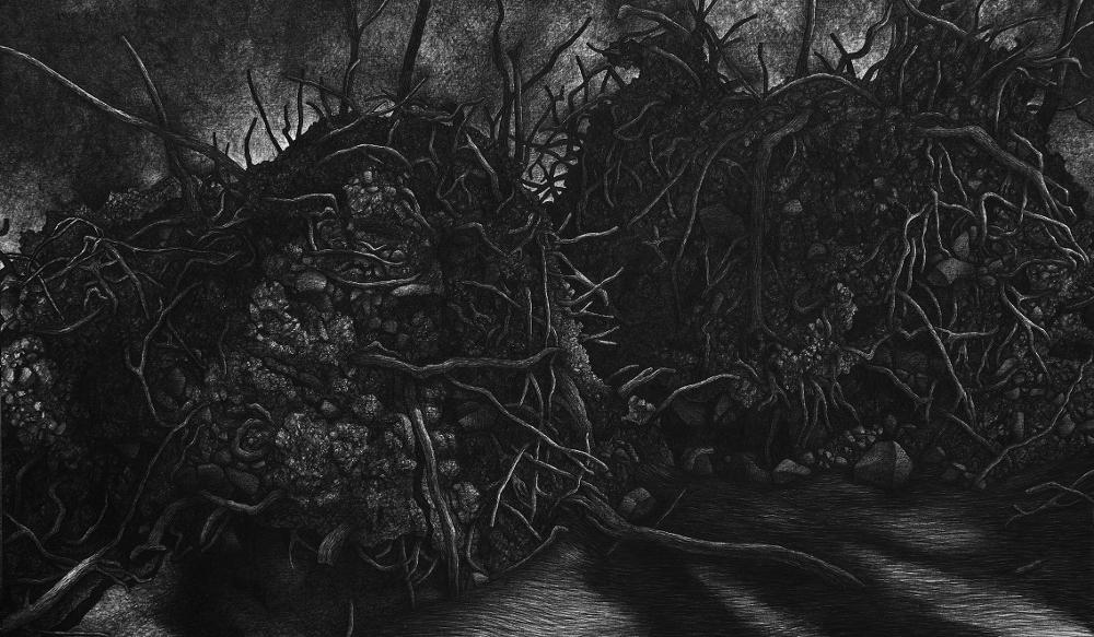 Sin titulo, por Julio Blancas, 2015, grafito sobre lienzo, 146 x 250 cm. Galería Saro León.