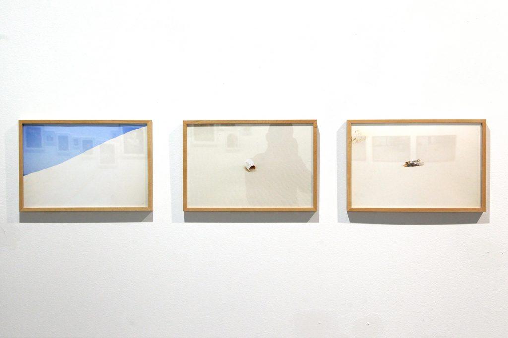 Landes, por Ángela Losada.