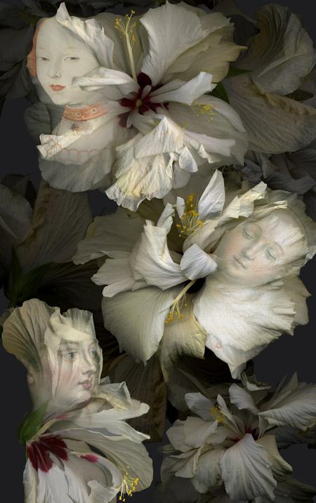 """""""Hibiscus blancos. Canción de primavera"""" (2017). Paloma Navares."""