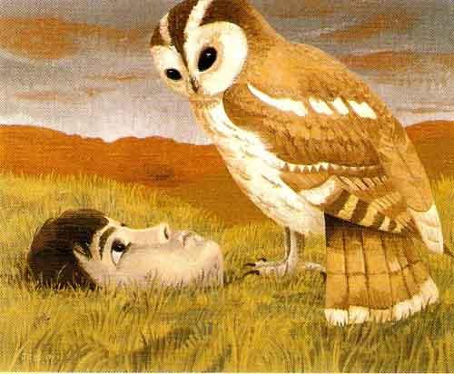 Paisagens Espirituais na arte de Juan Carlos Savater Artes & contextos CARABO