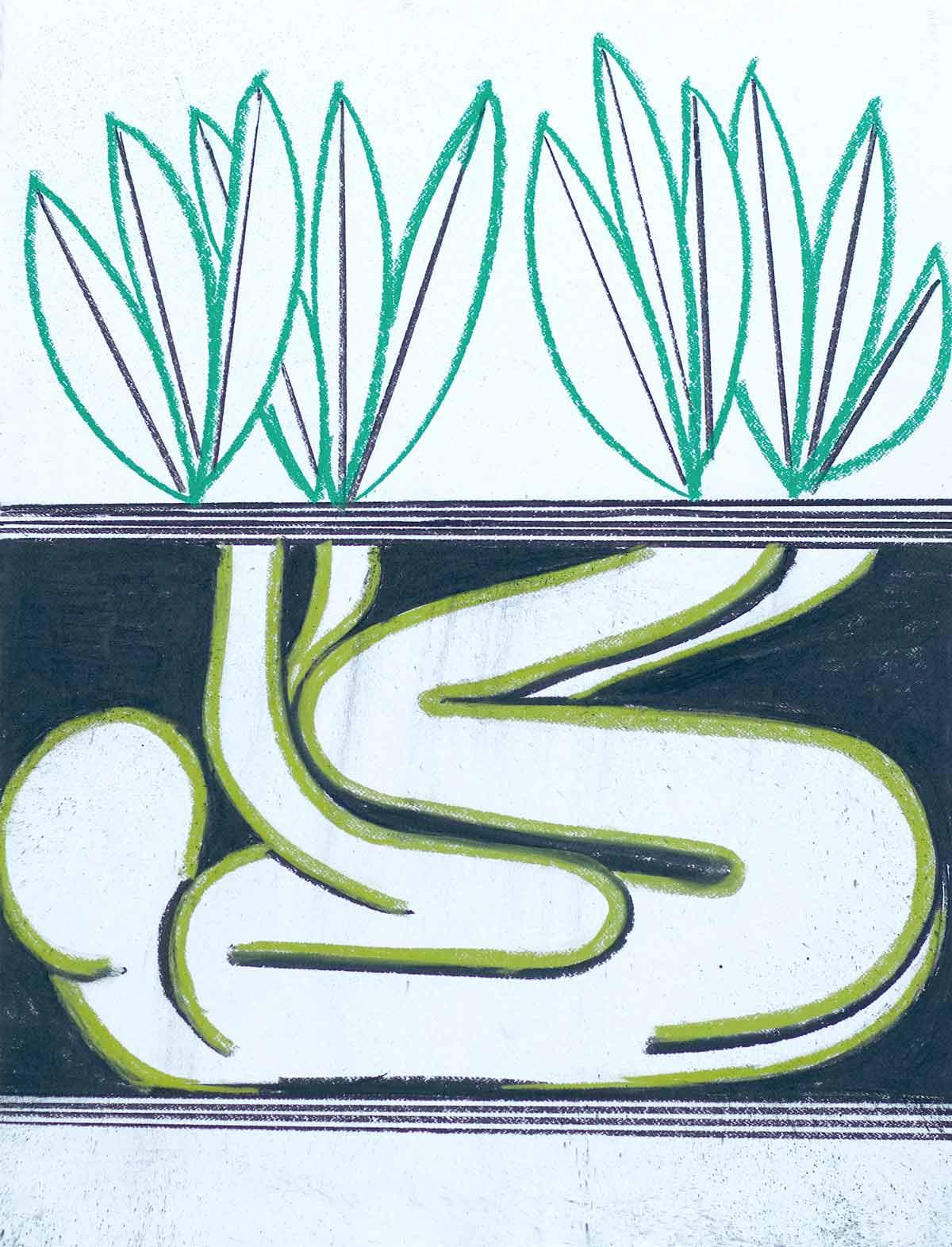 Um encontro vegetal - diálogo vivo com a natureza Artes & contextos 08 La Casa Encendida Un encuentro vegetal Eduardo Navarro Photosynthetics 2021 photography by Sofia Jallinsky
