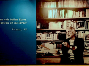 Picasso y los libros